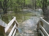 2008 Flooded Trail Stairs