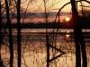 Sunrise Flood