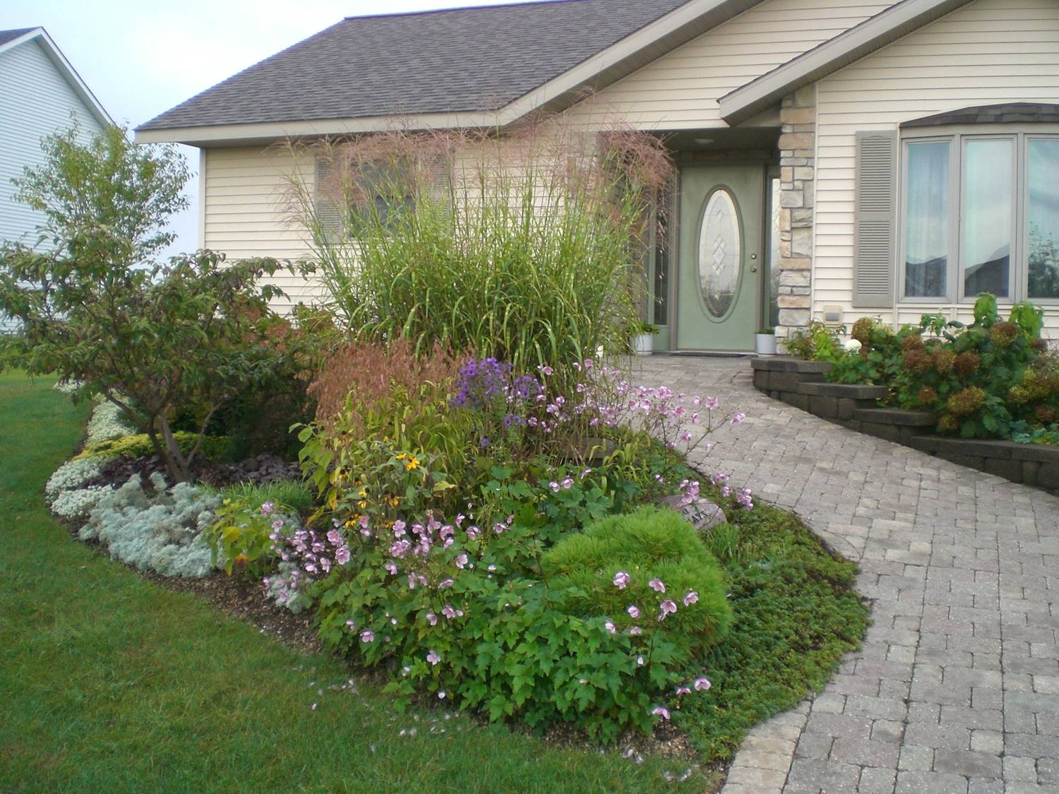 Landscaping With Native Plants : Nahant marsh education center landscaping with native plants
