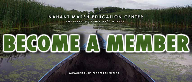 Nahant Marsh Education Center Nahant Marsh Education Center -