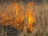 Fall 2009 Prairie Burn