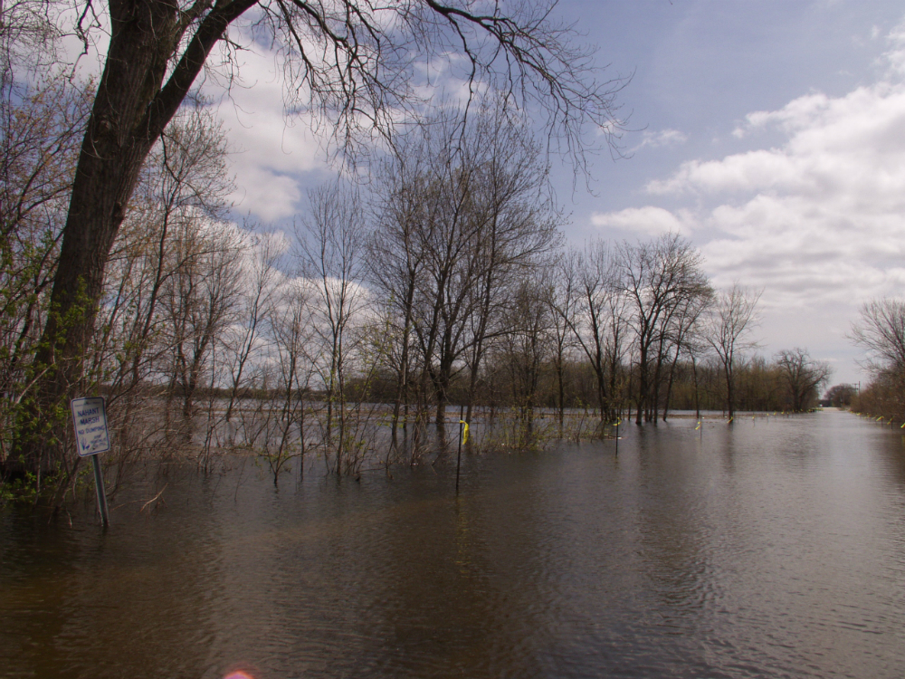 Flooded Wapello Avenue