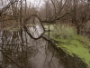 Flooded Vernal Pond