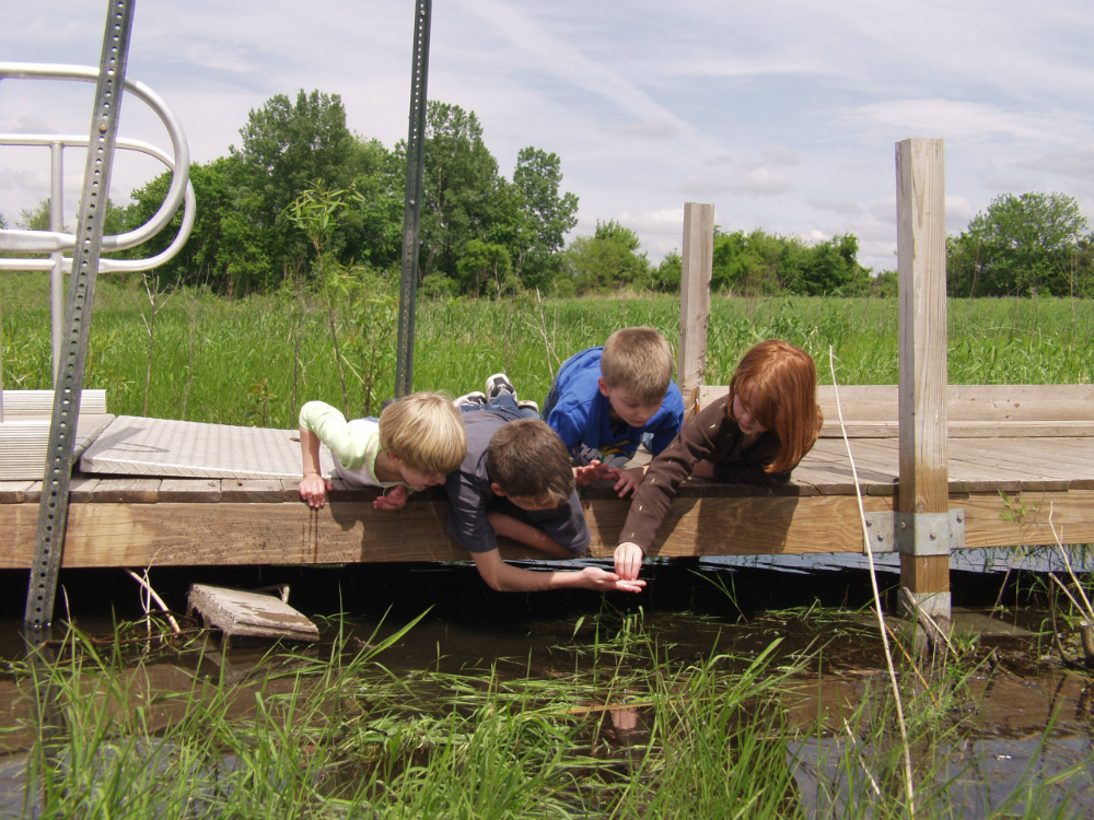 Kids Exploring the Marsh