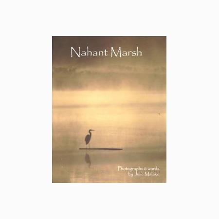 Nahant Marsh Book