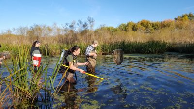 Scientists getting water samples and collecting specimens