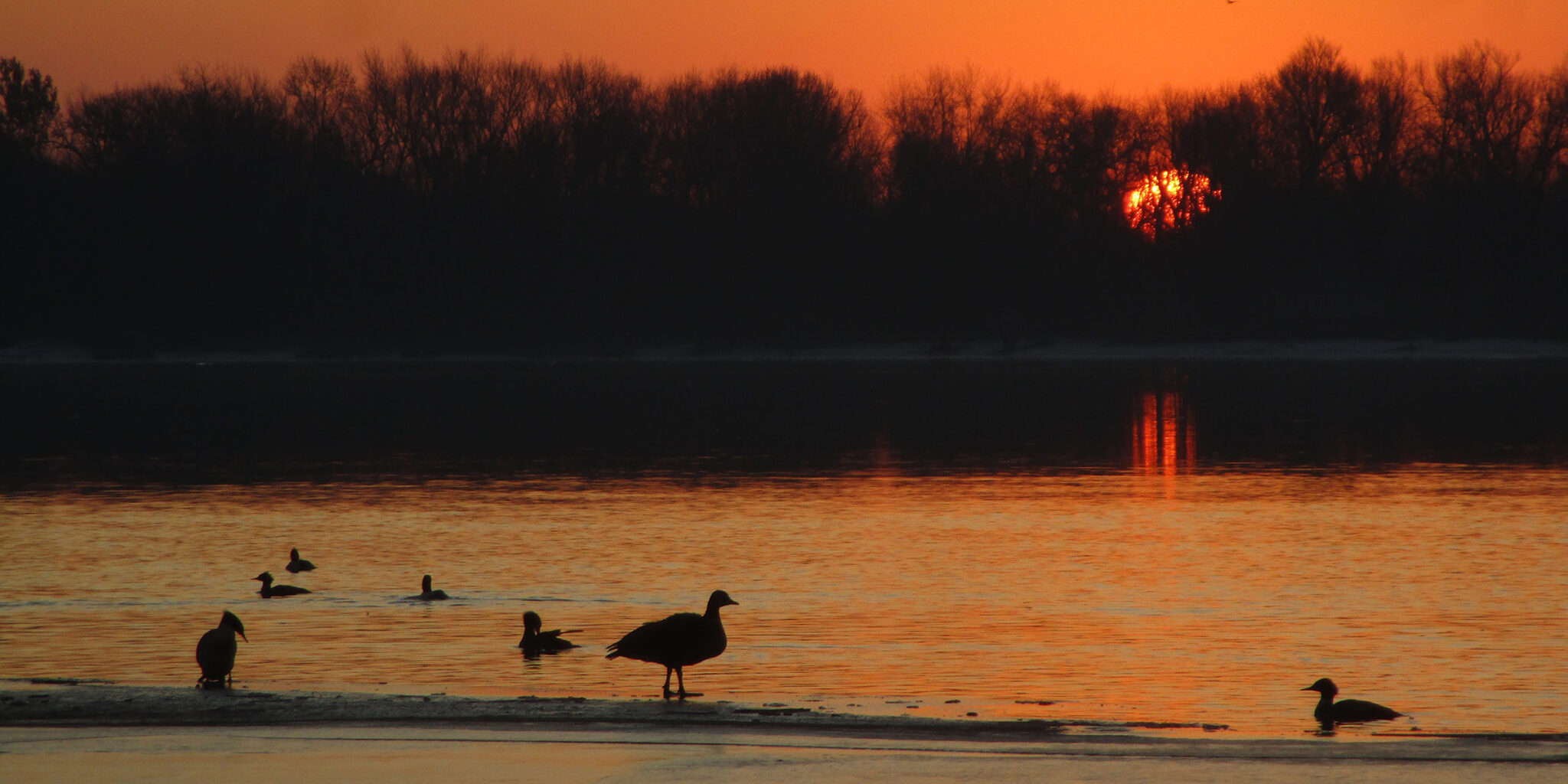 Sunset by the River at Nahant Marsh